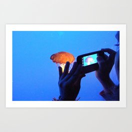 Jellyfish. Art Print