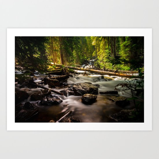 Nature's Creek  Art Print