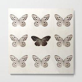 Black and White Butterflies Metal Print