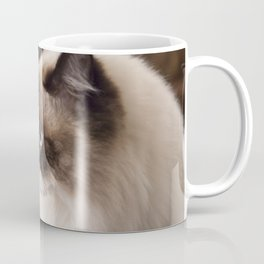 Chocolate Ragdoll Cat Coffee Mug
