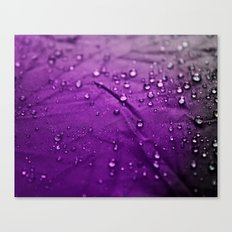 Water Drops! Canvas Print