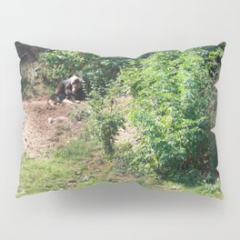 Furry Kindred Spirits Pillow Sham