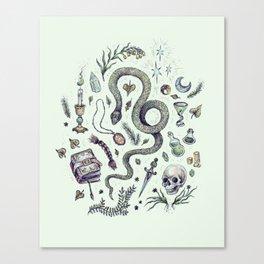 Slytherin, Those Cunning Folk Canvas Print
