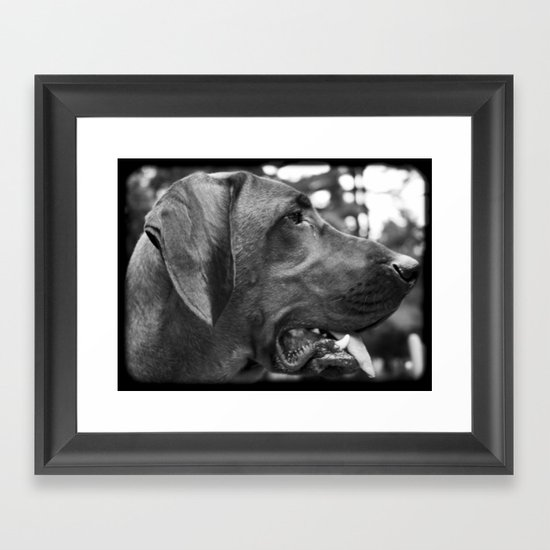 Redbone Framed Art Print