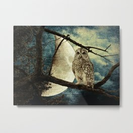 Barred Owl Bird Night Moon Blue Tans Country Art A137 Metal Print