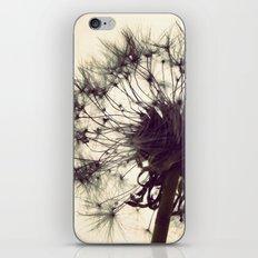 Dandelion Silhouette  iPhone & iPod Skin