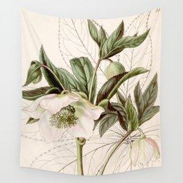 Helleborus orientalis Wall Tapestry