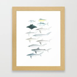 The Inhabitants of the Waters of Clipperton Atoll 2 Framed Art Print