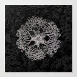Jellyfish (Black and White) Canvas Print
