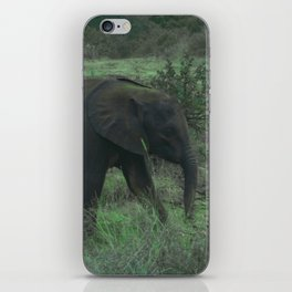 Young Elephant in Green iPhone Skin