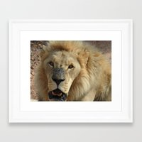 simba Framed Art Prints featuring Simba by Fer Ruz