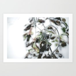 Winter. Art Print