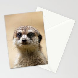 Meerkat_20151004_by_JAMFoto Stationery Cards