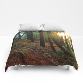 Talking To The Trees Comforters
