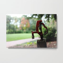 Red Spigot Metal Print