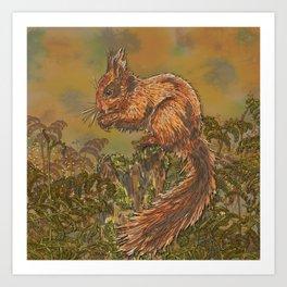 September Squirrel Art Print