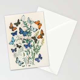 Vintage Scientific Illustration Butterfly Botanical Floral Lithograph Encyclopaedia Diagrams  Stationery Cards