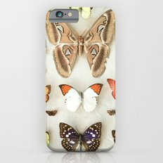 Butterflies and Moths iPhone 6s Slim Case