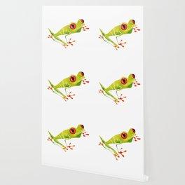 Red Eyed Tree Frog Wallpaper