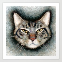 Cat #1 (Xavier) Art Print