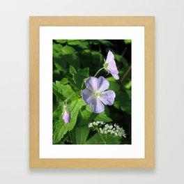 Wild Geranium Framed Art Print