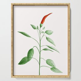 Little Hot Chili Pepper Plant Serving Tray
