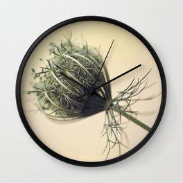 Hello, Gorgeous | Daucus Carota Wall Clock