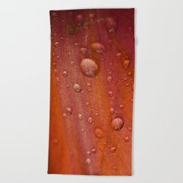 Dewdrops Beach Towel