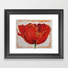 Parrot Tulip Framed Art Print
