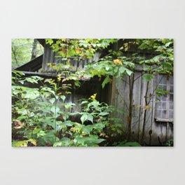 Broken Woods Canvas Print