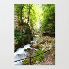 Vintgar Park, Slovenia Canvas Print