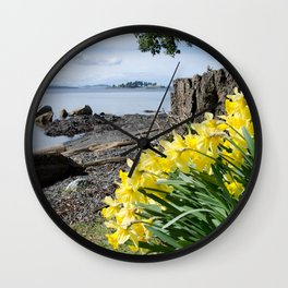 DAFFODILS OF SPRING IN THE SAN JUAN ISLANDS Wall Clock