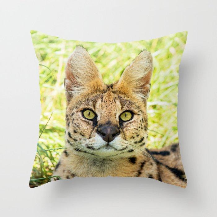 SERVAL BEAUTY Throw Pillow