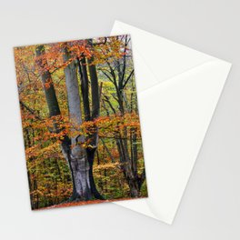 The Beauty of Fall Stationery Cards