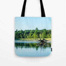Driftwood Reflection Tote Bag