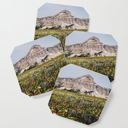 Fossil Mountain Wildflowers Coaster