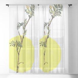 branch spring sun nature watercolor Sheer Curtain
