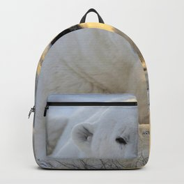 Majestic Giant Adult Polar Ice Bear Sitting On Cold Ground Close Up Ultra HD Backpack