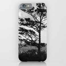 Tree Beside the Ocean iPhone 6s Slim Case