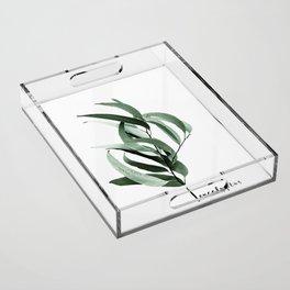 Eucalyptus - Australian gum tree Acrylic Tray