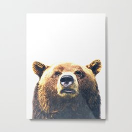Bear portrait Metal Print