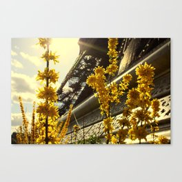 Flowers of the Eiffel Tower Canvas Print