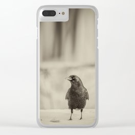 Betsy's Crow In The Snow Clear iPhone Case