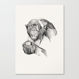 Seven Monkeys – Gluttony Canvas Print