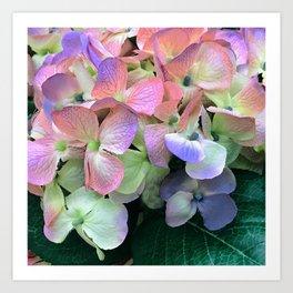 "Rainbow Floral 'Butterflies"" Fantasy Design Art Print"
