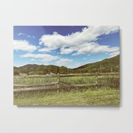 Fencing • Appalachian Trail Metal Print