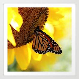 Monarch Sunflower Art Print
