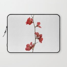 Branch with flowers Laptop Sleeve