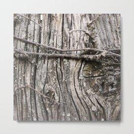 Weathered Knot Metal Print