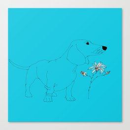 Blue Dachsund Love Canvas Print
